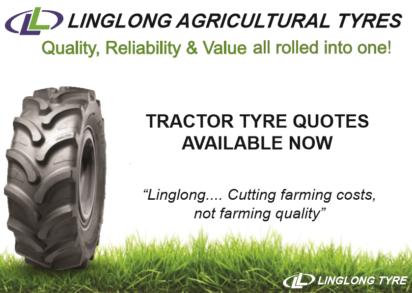 Linglong Advert